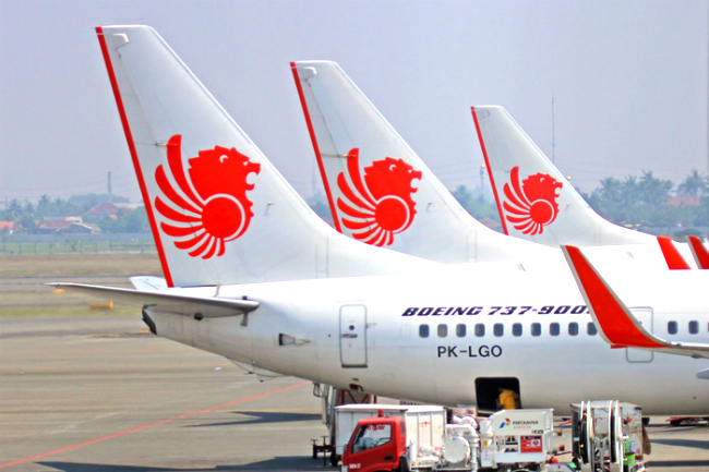 ve may bay lion air gia re 4